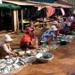 Dorfmarkt nähe Kampot