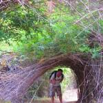 "Tobi im Dschungel bei den ""Li Phi Falls"""