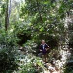 Tiger Trail - Trekking