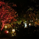 Utopia - märchenhafter Garten