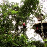 Zipline zum Treehouse 7