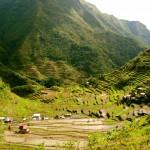 Ifugao Reisterrassen - Batad